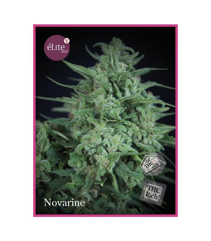 Novarine THCV