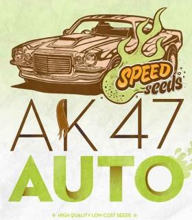 Auto AK 47