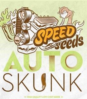 Skunk Auto by Speed Seeds