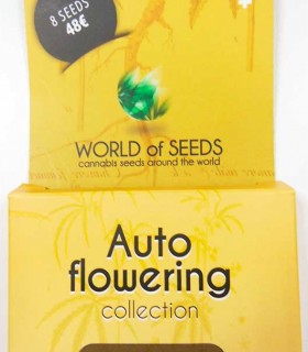 Autoflowering Collection by World of Seeds