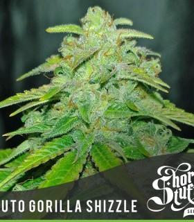 Short Stuff Seeds Auto Gorilla Shizzle
