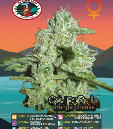 California Orange Cheese