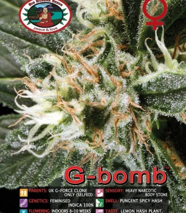 G Bomb