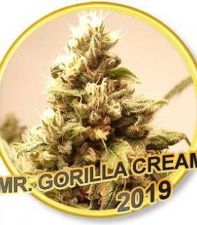 Mr. Gorilla Cream