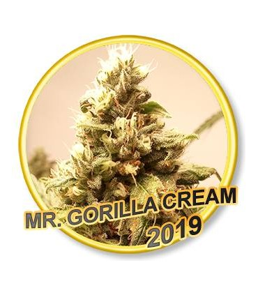 Mr. Gorilla Cream