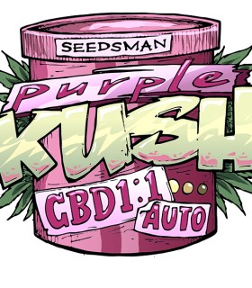 Purple Kush 1:1 Auto