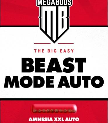 Beast Mode Auto