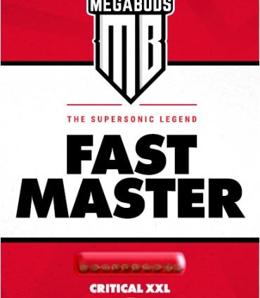 Fast Master
