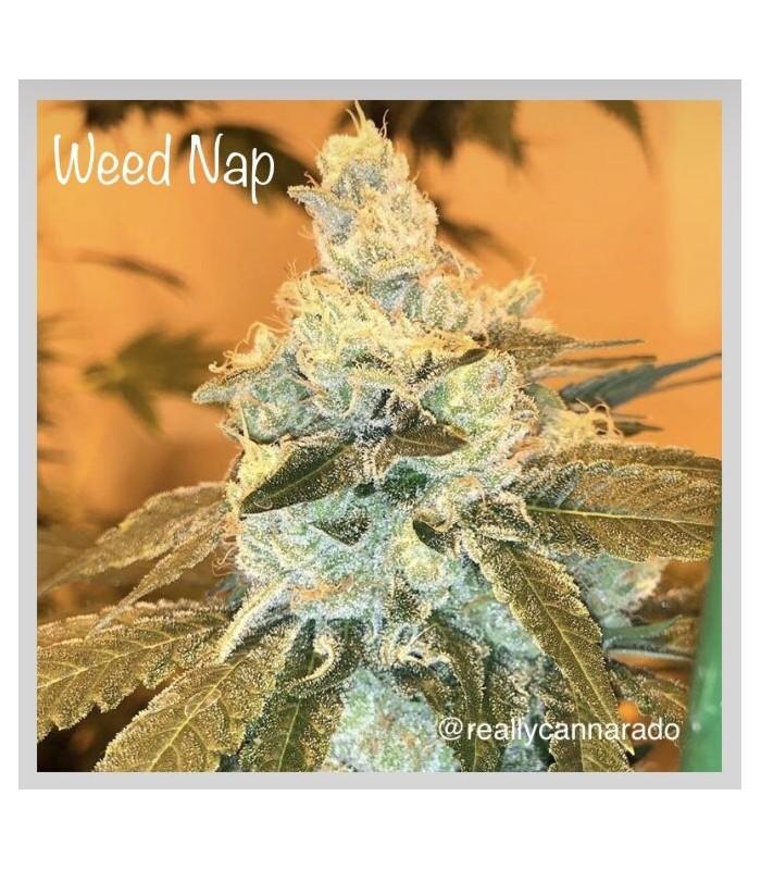 Weed Nap