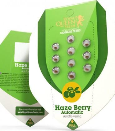 Haze Berry Automatic