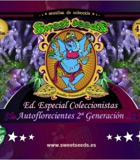Edicion Coleccionista Autofloreciente 2 Generacion by Sweet Seeds