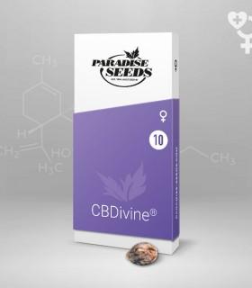 CBDivine
