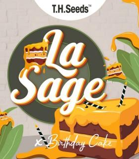 La S.A.G.E X BC X SBC
