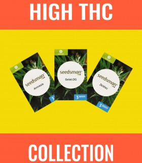 High-THC Collection Auto
