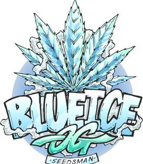Blue ICE OG