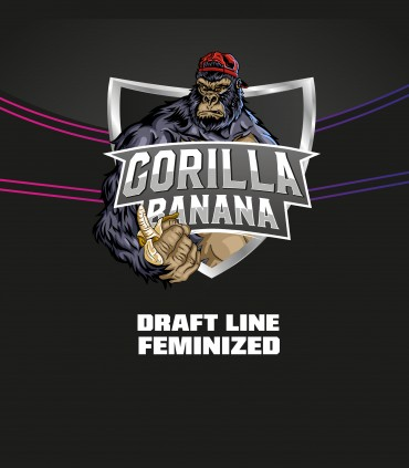 Gorilla Banana