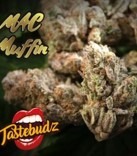 Mac Muffin