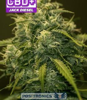 CBD + Jack Diesel