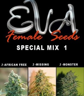 Special Mix by Eva Seeds