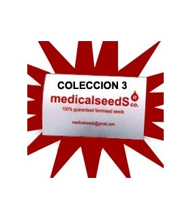 Coleccion 3 by Medical Seeds