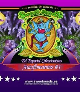 Edicion Coleccionista Autoflorecientes 1 by Sweet Seeds