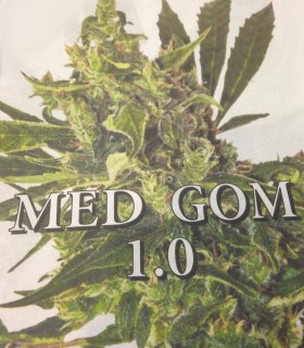 Med Gom 1.0 by Grassomatic Seeds
