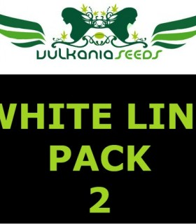 White Line Pack 2 by Vulkania Seeds