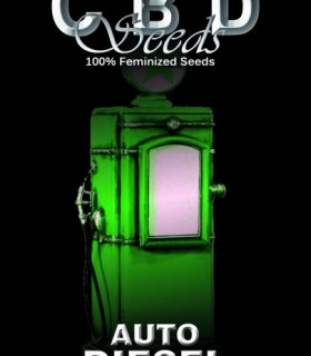 Auto Diesel by CBD Seeds