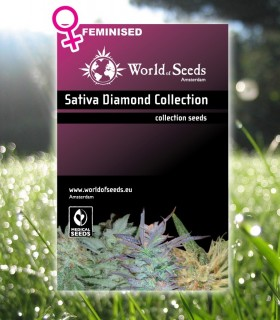 Sativa Diamond Collection by World of Seeds