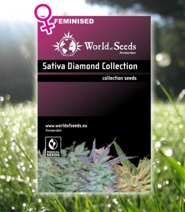 Sativa Diamond Collection