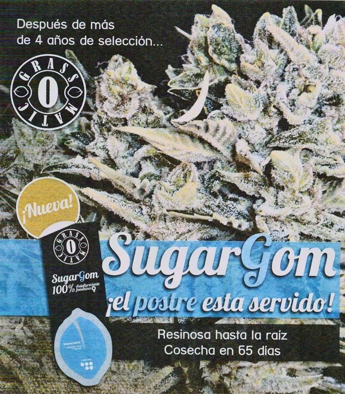 SugarGom