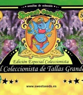 Ed. Especial Autoflorecientes El Coleccionista de Tallas Grandes by Sweet Seeds