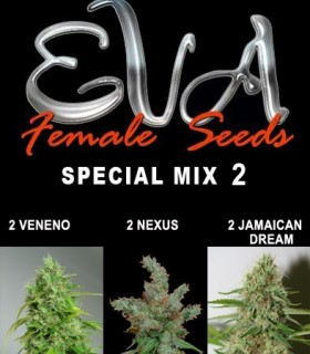 Special Mix 2 by Eva Seeds