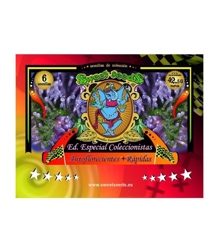Edicion Coleccionista Autoflorecientes + Rapidas
