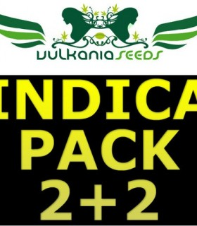 Indica Pack by Vulkania Seeds