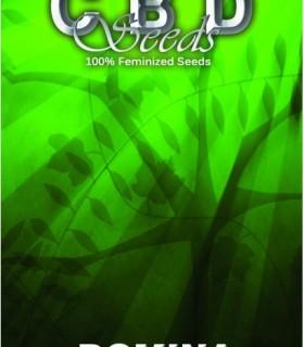 Domina by CBD Seeds