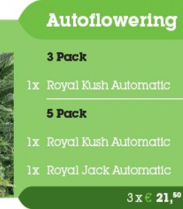 Autoflowering Outdoor Mix