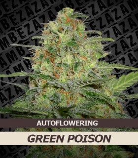 Green Poison Automatic
