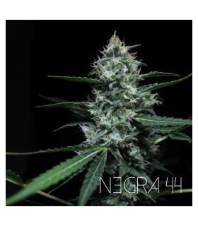 Negra 44 by R-Kiem