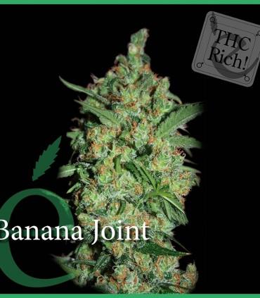 Banana Joint