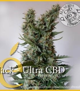 Jack - Ultra CBD