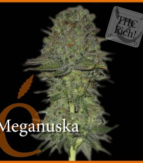 Meganuska