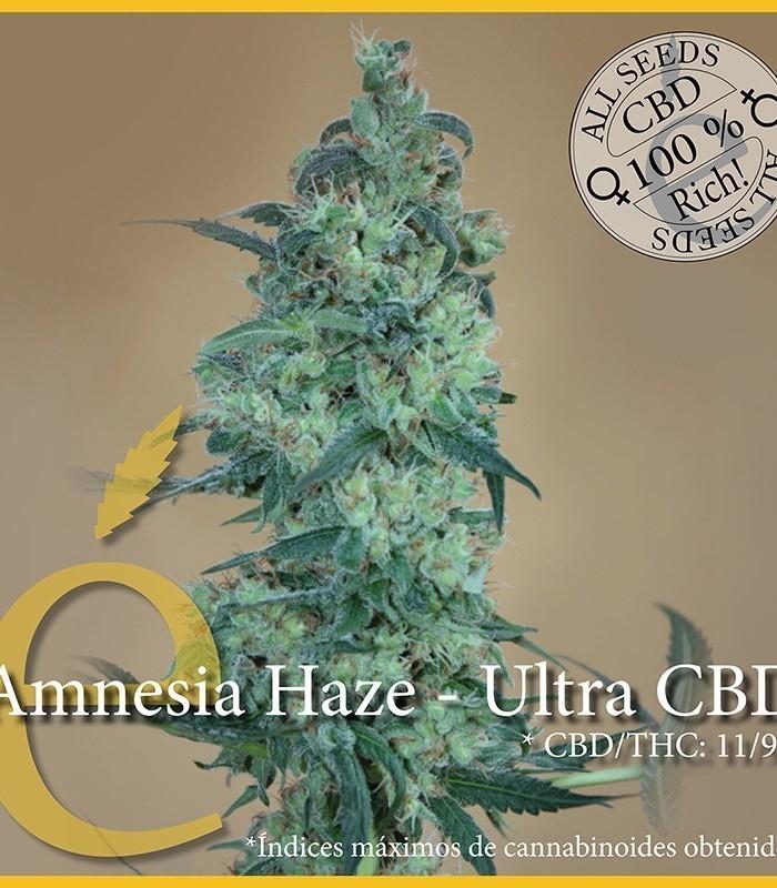Amnesia Haze Ultra CBD