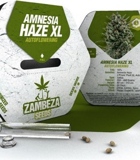 Amnesia Haze XL Automatic