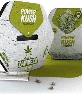 Power Kush