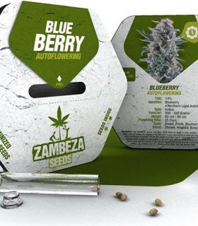 Blueberry Automatic