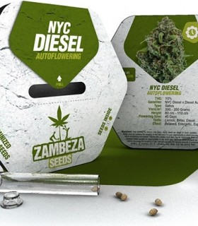 NYC Diesel Automatic