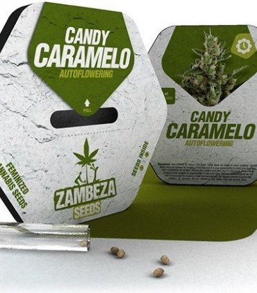 Candy Caramelo Automatic