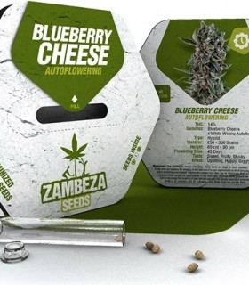 Blueberry Cheese Automatic
