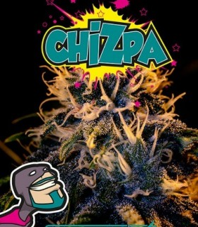 Chizpa